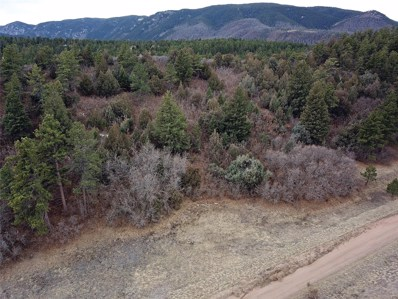 4438 Comanche Drive, Larkspur, CO 80118 - MLS#: 8912865