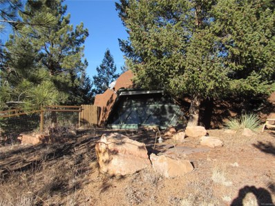 15335 Swiss Road, Pine, CO 80470 - MLS#: 8923584
