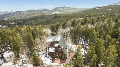 104 Sioux Trail, Evergreen, CO 80439 - #: 8928243