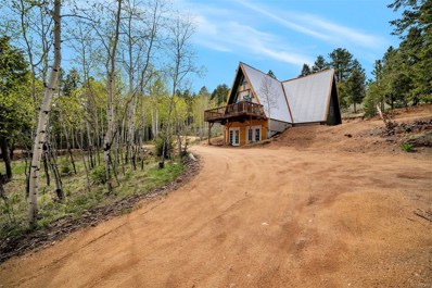785 Old Sawmill Road, Bailey, CO 80421 - #: 8994909