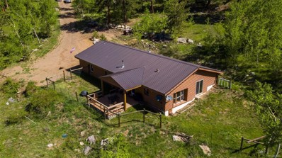 1510 Robinson Hill Road, Black Hawk, CO 80422 - #: 9011673