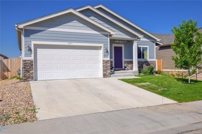 851 Village Drive, Milliken, CO 80543 - MLS#: 9032182