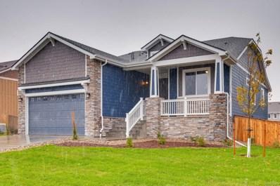 293 Calhoun Circle, Castle Rock, CO 80104 - #: 9067680