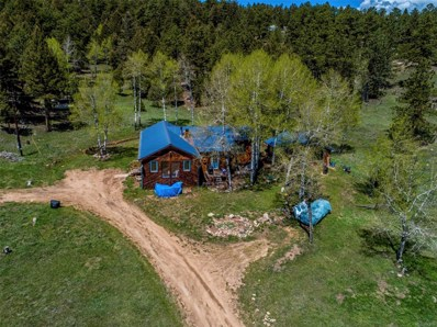 29320 S Sunset Trail, Conifer, CO 80433 - #: 9084098