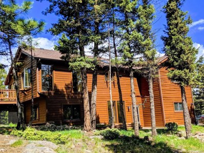 13242 Riley Peak Road, Conifer, CO 80433 - #: 9091283