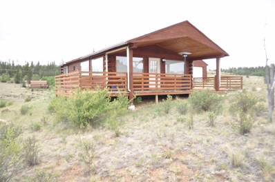 76 Apache Court, Como, CO 80456 - MLS#: 9112542