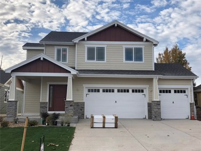1027 Canal Drive, Windsor, CO 80550 - MLS#: 9116136