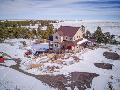 25545 Shorthorn Circle, Ramah, CO 80832 - #: 9123935
