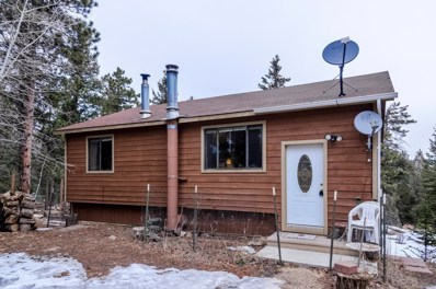 4992 County Road 72, Bailey, CO 80421 - #: 9130939