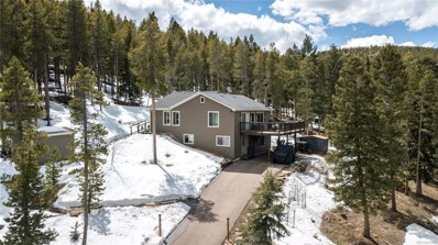 6773 Snowshoe Trail, Evergreen, CO 80439 - #: 9155267