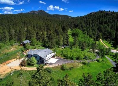 9928 S Turkey Creek Road, Morrison, CO 80465 - #: 9161701