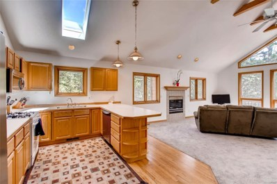 7027 S Brook Forest Road, Evergreen, CO 80439 - #: 9168867