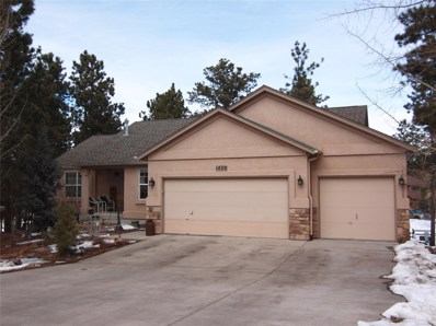 1420 Evergreen Heights, Woodland Park, CO 80863 - #: 9197519