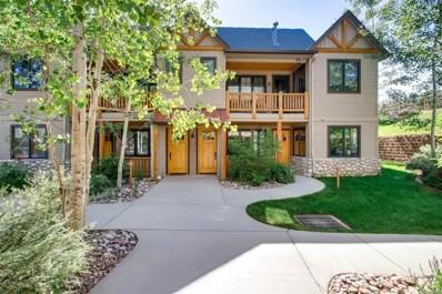 31256 Stone Canyon Road UNIT 209, Evergreen, CO 80439 - #: 9225945