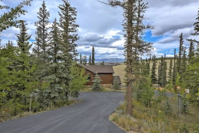 387 Wampum Lane, Como, CO 80456 - MLS#: 9236249