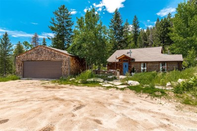 6600 Bluebell Lane, Evergreen, CO 80439 - #: 9293377