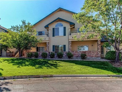 8767 E Dry Creek Road UNIT 1312, Centennial, CO 80112 - #: 9299492