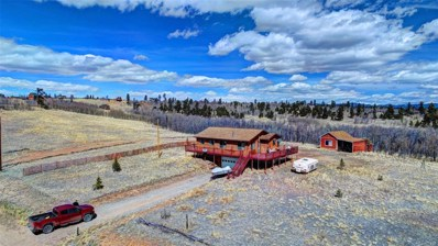 79 Pheasant Run, Como, CO 80432 - MLS#: 9316695