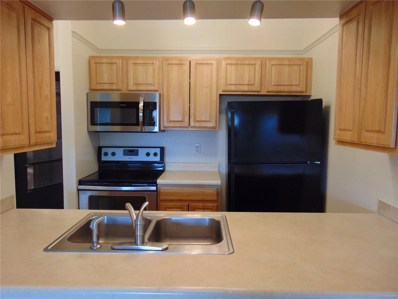 4294 S Salida Way UNIT 13, Aurora, CO 80013 - #: 9328737