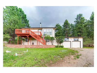 1191 Sleepy Hollow Drive, Bailey, CO 80421 - MLS#: 9346766