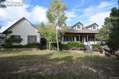 19940 Doewood Drive, Monument, CO 80132 - MLS#: 9361192