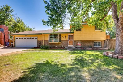 3062 S Webster Street, Denver, CO 80227 - #: 9369210