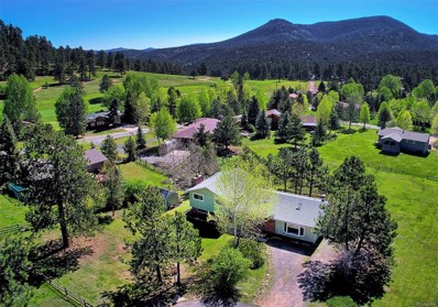 29563 Greenwood Lane, Evergreen, CO 80439 - #: 9388536