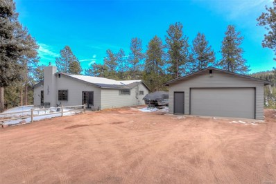 27132 Log Trail, Conifer, CO 80433 - #: 9389838