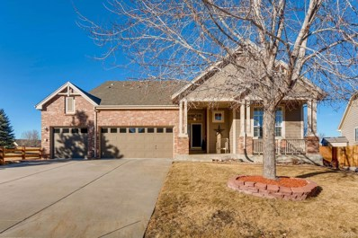 11571 Terrawood Court, Parker, CO 80134 - MLS#: 9401161