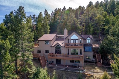 4600 Olympic Way, Evergreen, CO 80439 - #: 9402514