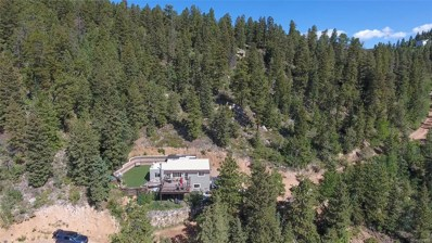 31307 Kings Valley, Conifer, CO 80433 - #: 9405924