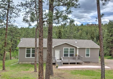 6376 King Road, Evergreen, CO 80439 - #: 9410842