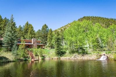 859 Mill Creek Road, Dumont, CO 80436 - #: 9465555