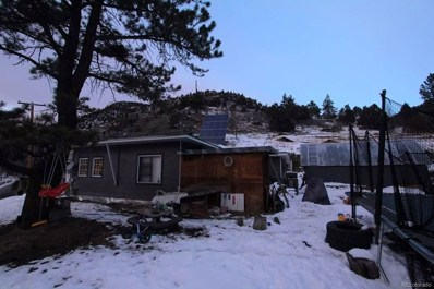 852 Mill Creek Road, Dumont, CO 80436 - #: 9474890