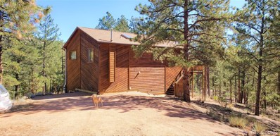 16456 Ouray Road W, Pine, CO 80470 - #: 9494627