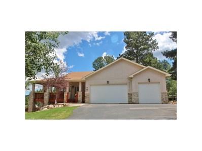 407 Karen Lane, Woodland Park, CO 80863 - MLS#: 9505876