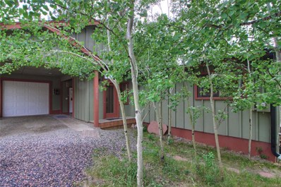 30669 Kings Valley Drive, Conifer, CO 80433 - MLS#: 9564656