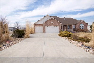 16675 Shadow Wood Court, Hudson, CO 80642 - #: 9604758