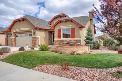 13273 Dominus Way, Colorado Springs, CO 80921 - MLS#: 9648499