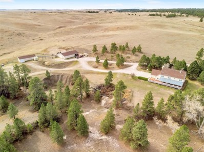 31200 Private Road 57, Kiowa, CO 80117 - #: 9650122