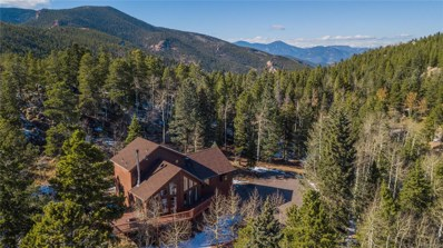 10622 Conifer Mountain Road, Conifer, CO 80433 - #: 9666480
