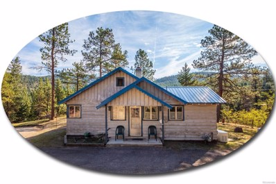 5601 Little Cub Creek Road, Evergreen, CO 80439 - #: 9685209