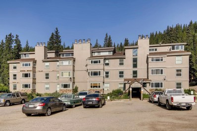 9366 Fall River Road UNIT 201, Idaho Springs, CO 80452 - MLS#: 9719277