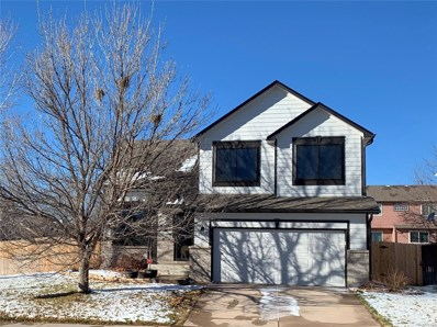 11609 Columbine Place, Thornton, CO 80233 - #: 9725273