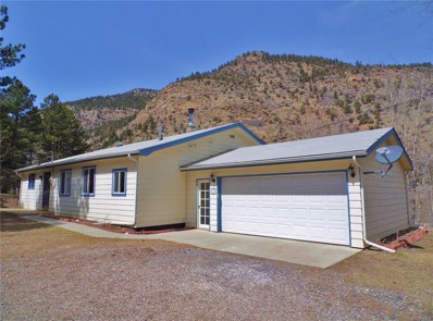 659 Silver Lakes Drive, Lawson, CO 80436 - #: 9725487