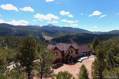 199 Running Elk Point, Divide, CO 80814 - #: 9742058