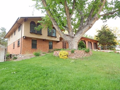 3994 S Whiting Way, Denver, CO 80237 - #: 9762743