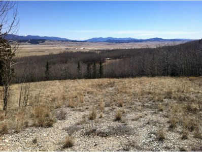 770 Selkirk Lane, Jefferson, CO 80456 - MLS#: 9823601