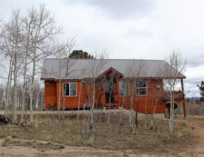 20 Willet Lane, Como, CO 80432 - #: 9831578