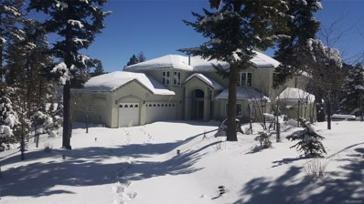 32240 Blue Springs Drive, Evergreen, CO 80439 - #: 9837904